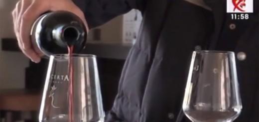 Spot DSE - Despre turismul viticol