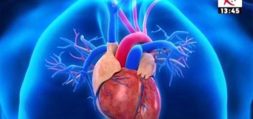 Spot Diferente si Esente - Cum putem preveni bolile cardiovasculare