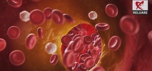 DSE Reluare - Valorile normale ale glicemiei